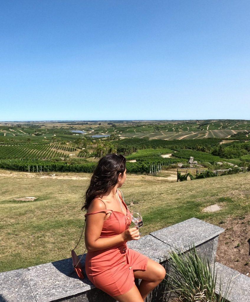 uruguay tour vino degustazione mw
